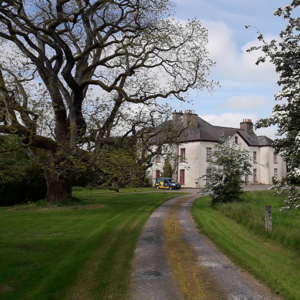 Ballykilcavan House view from the drive
